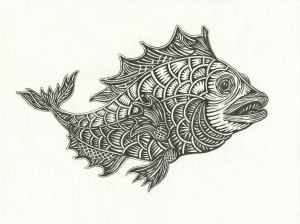 During recent rainstorm this fish came into view in full color, but I wanted to capture it while in black and white. Drawn by Meredith Eliassen