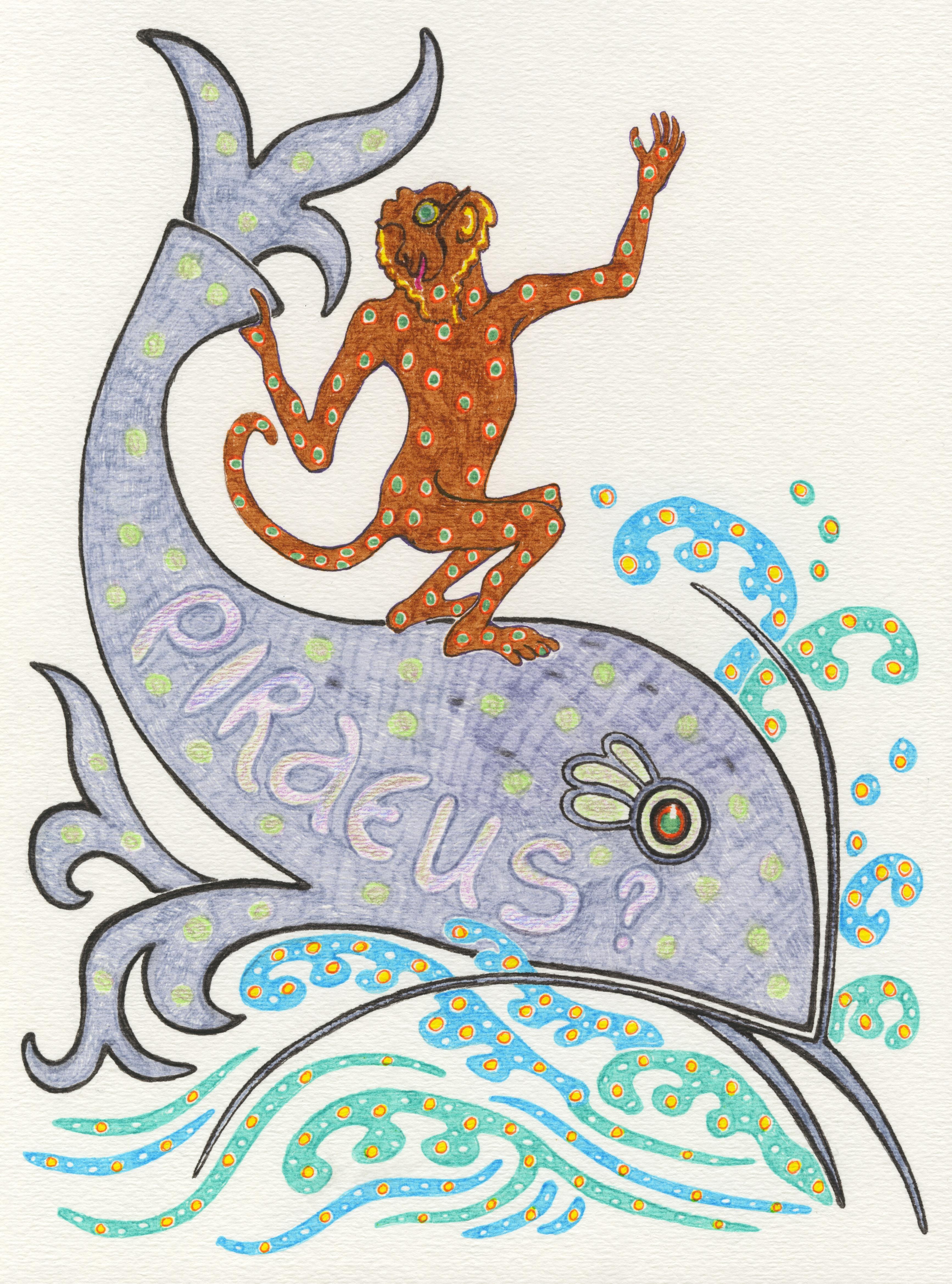 Monkey dolphin